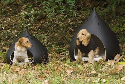 dom dla psów