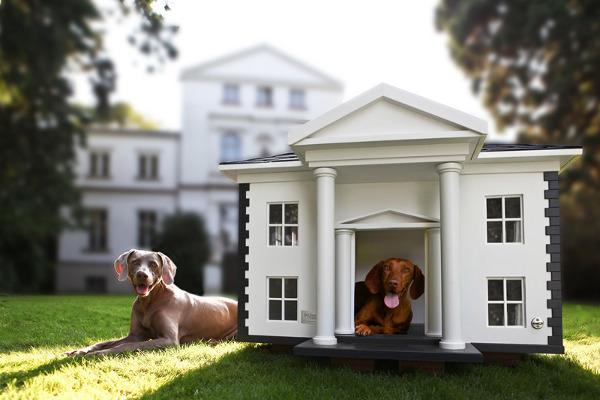 domek dla psa legowisko