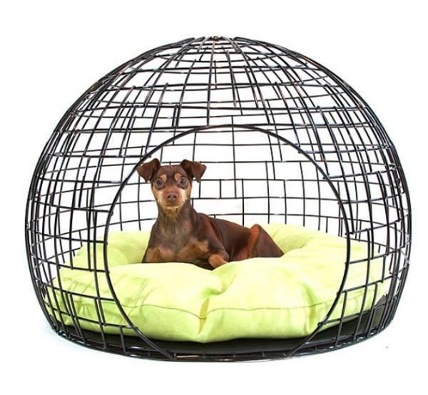 domki dla psa