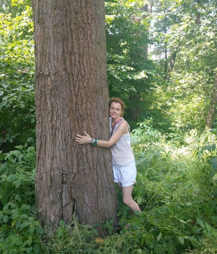 Szanujmy drzewa